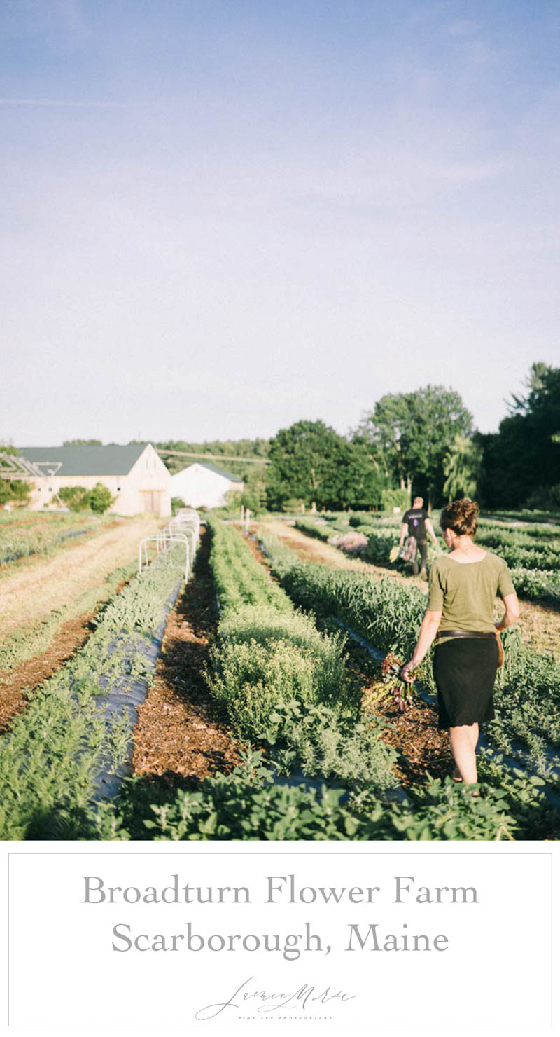 Broadturn Family Farm Scarborough Maine