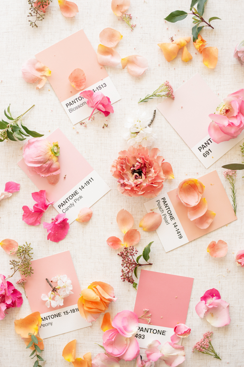 newport feminine pink wedding