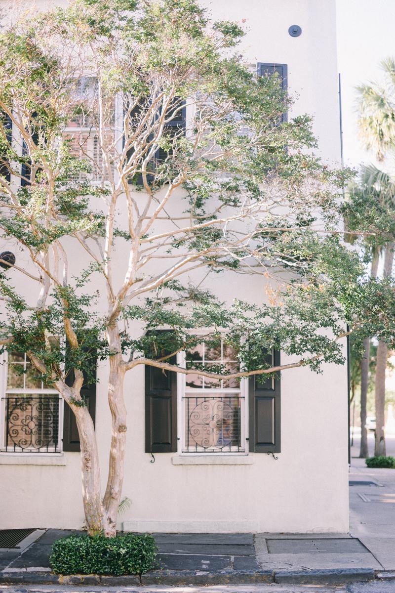 Charleston Influencer photographer   Charleston Wedding photography