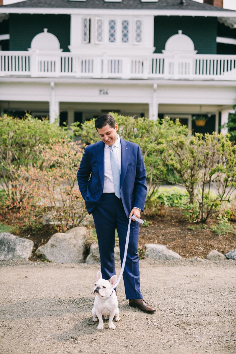 french bulldog maine wedding