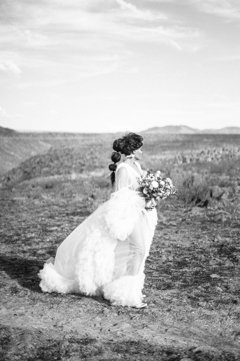 arizona editorial photos