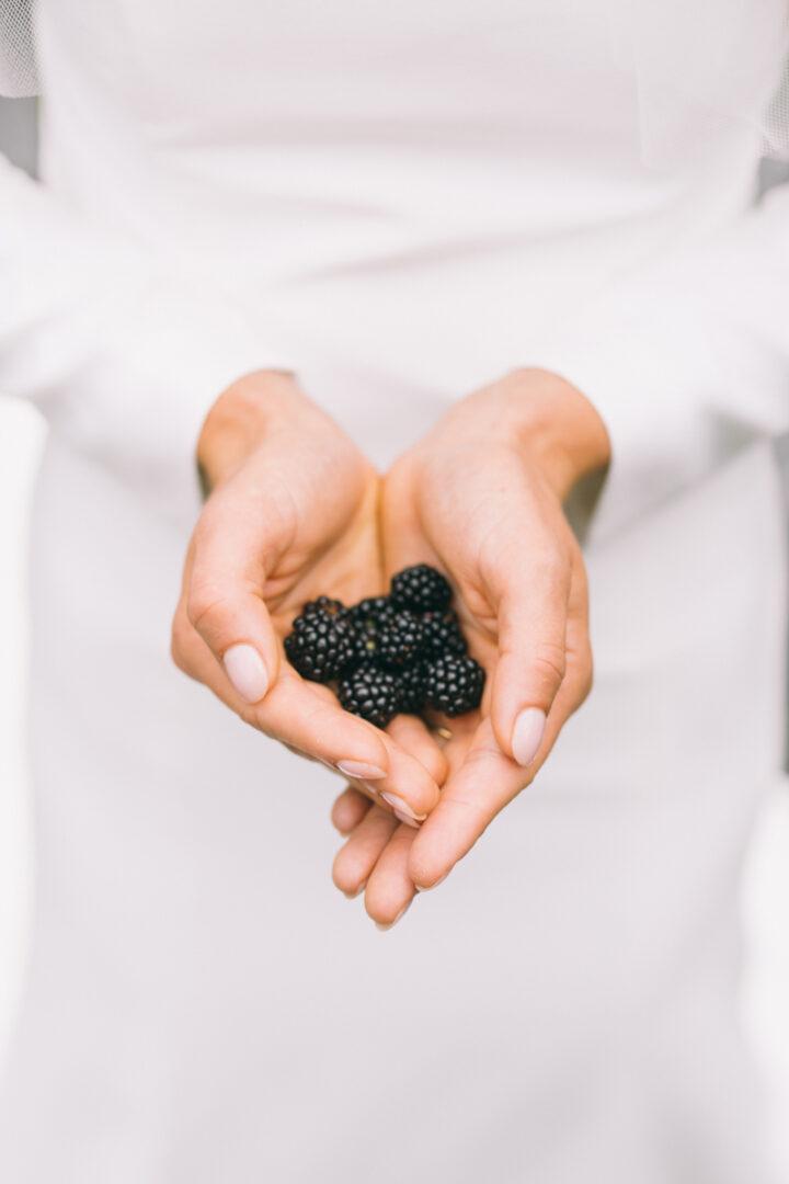 maine blackberries