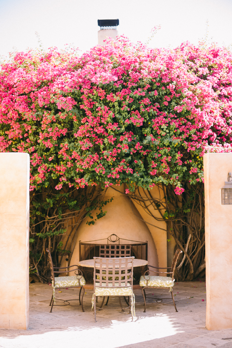 royal palms resort wedding venue scottsdale arizona