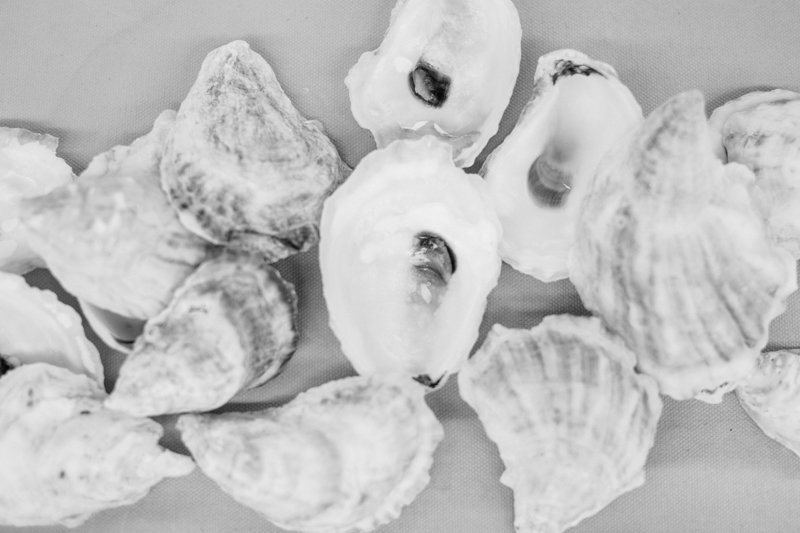 oyster workshop with campfire studios
