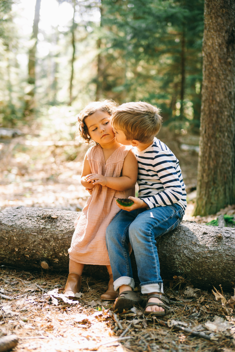 maine woods family session